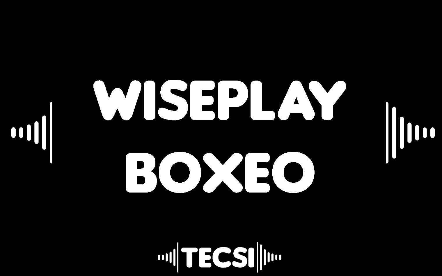 WISEPLAY BOXEO